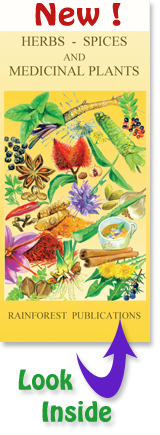 pocket field guide to the herbs, spices, and medicinal plants in Latin America