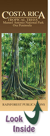 pocket field guide to the Tropical Trees of the Osa Peninsula, Manuel Antonio State Park