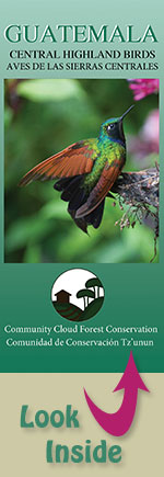 pocket field guide to the birds of Guatemala's central highlands