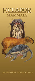 pocket field guide to the  mammals of Ecuador