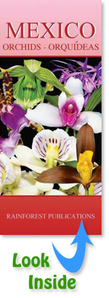 pocket field guide to Orchids in Mexico