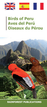 pocket field guide to the birds of Peru